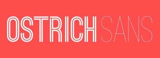 1472907010-4933-ostrich