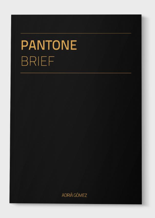 Pantone-Brief-1
