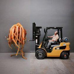 pasta-cat