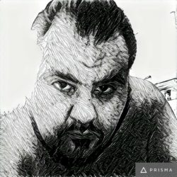 received_10210793131563486-250x250 Prisma : l'app che ci fa tutti artisti
