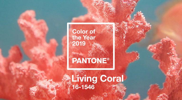 Living Coral: cosa è il colore Pantone dell'anno e perché è così importante? #COY19