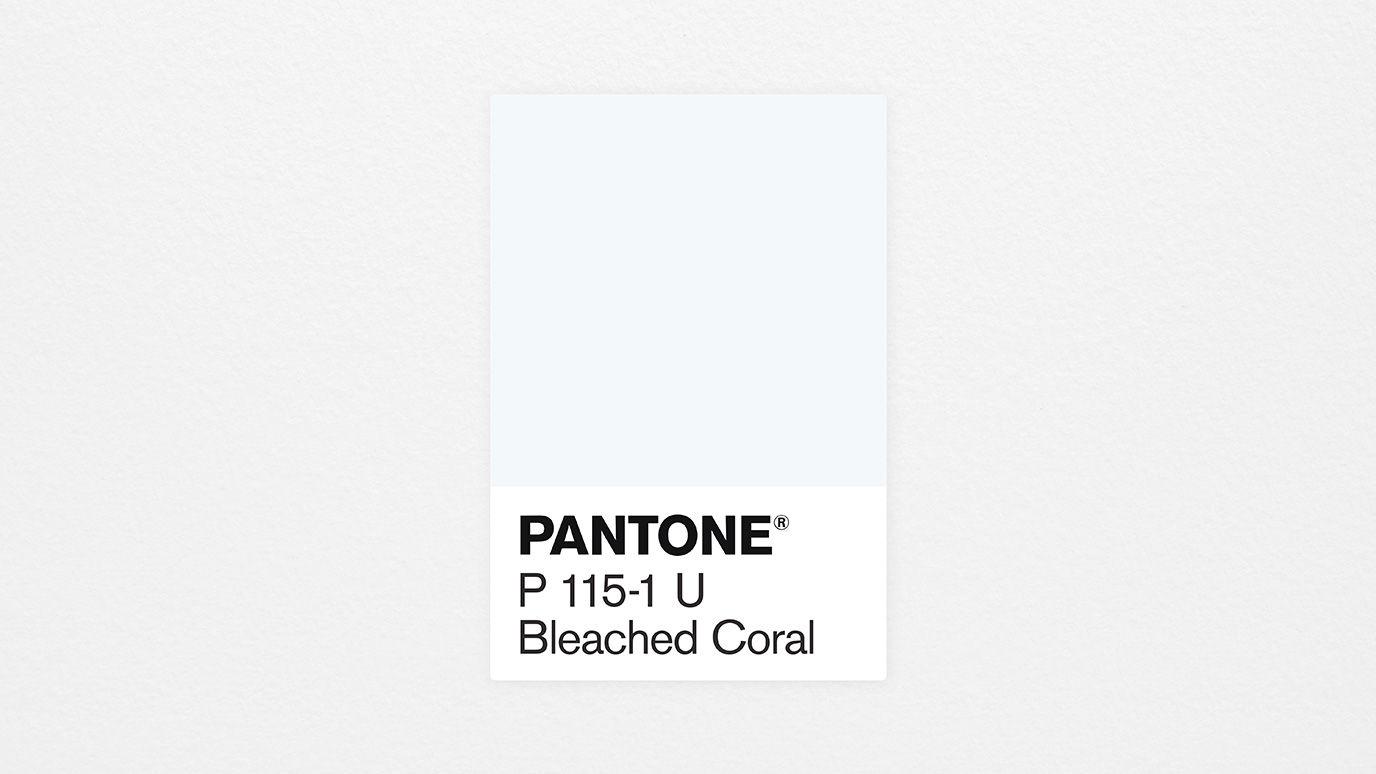 coloroftheyear_swatch Il colore pantone del 2020 'sarà Bleached Coral'